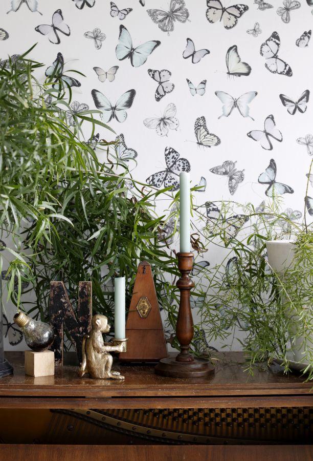 news bersicht 11 2017 rasch textil greenhouse tapeten. Black Bedroom Furniture Sets. Home Design Ideas
